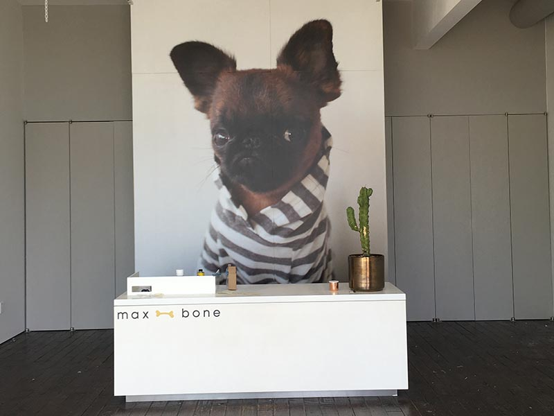Wall Graphics, Max Bone in Malibu