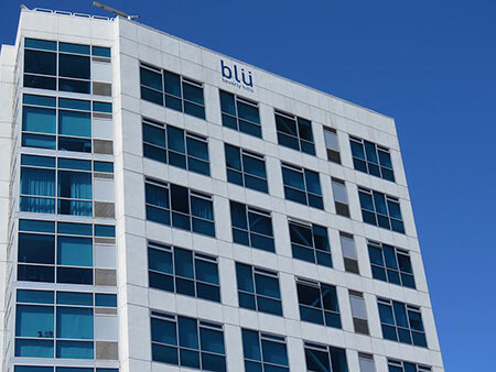 HandPaintedSignage_BusinessSignage_blu_BeverlyHills_PremiumSignSolutions