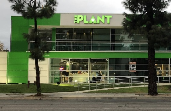 These building channel letters for The Plant give the Woodland Hills cannabis store a good high vantage point-positioned display for its brand.