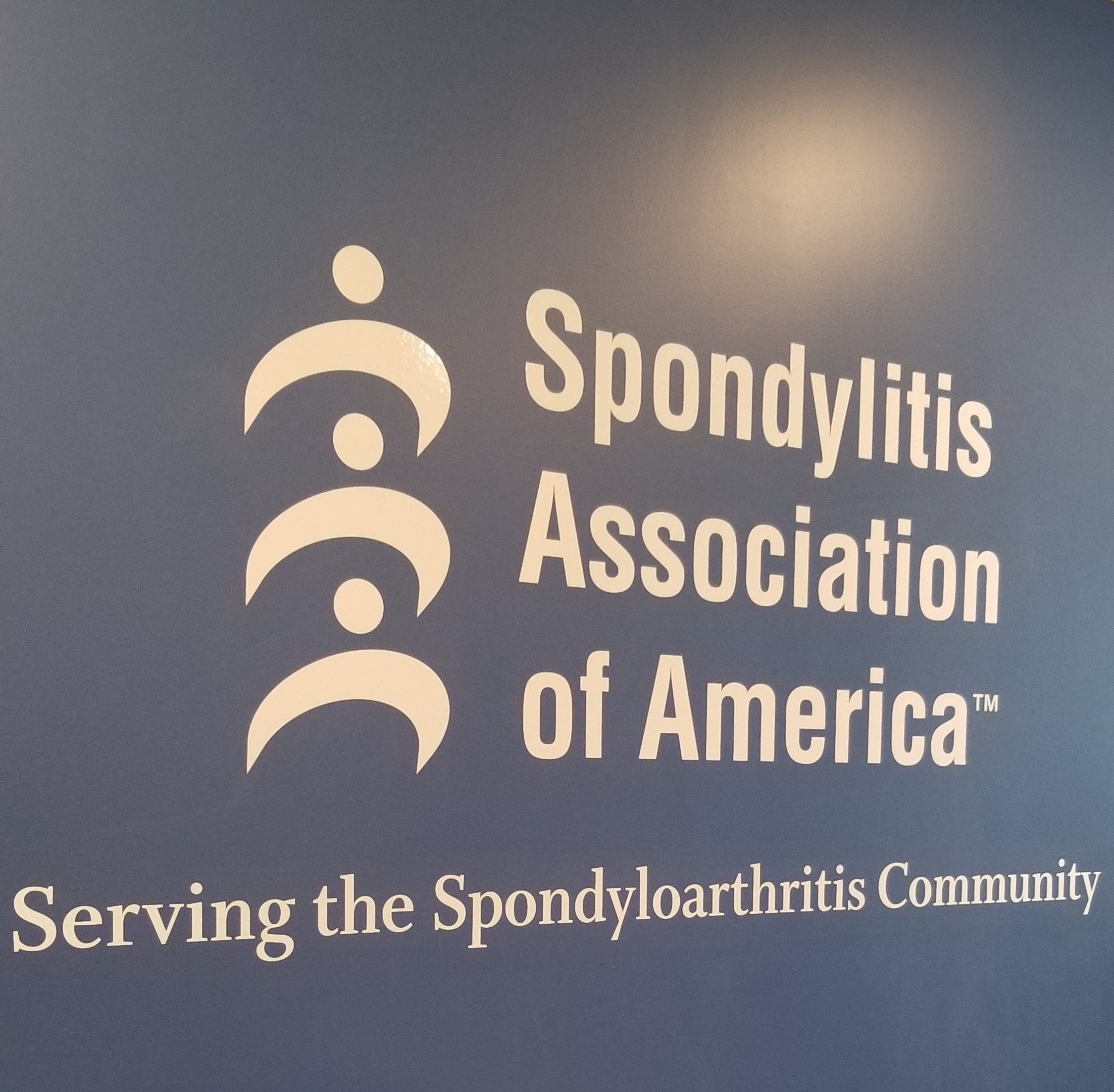 These are the wall graphics lobby sign for Spondylitis Association of America. With this, the Ventura nonprofit's office looks even more visually impressive.